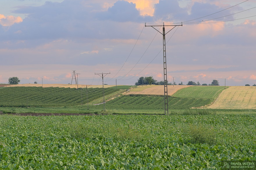 Paweł Więsyk - Photographs: Landscape with Power Lines